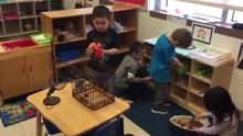 Dramatic Play - Animal Hospital